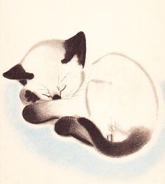 KITTEN by Clare Turlay Newberry Vintage 1937 Hand MATTED Print Cute CAT Art Picture