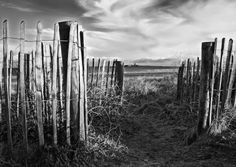 South Strand Skerries, the wooden fence leading to the beach. photo by chris radley Radley, Wooden Fence, Us Beaches, Sweden, New York Skyline, Beach House, Coast, Spaces, Travel