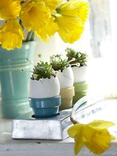 Egg Planter - so cute <3