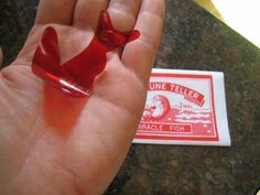 Anyone else remember fortune teller fishes? brought to you by u/linsyurg @ r/nostalgia