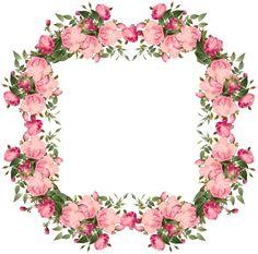 Vintage Pink | free vintage roses frames and border png – Vintage Rosenrahmen png ...