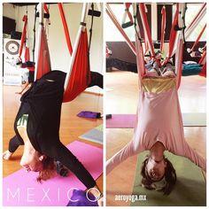 Quieres ser Profesor de AeroYoga®? #MEXICO #wellness #ejercicio #moda #belleza #tendencias #fitness #yogaaereo #pilatesaereo #bienestar #aeroyogamexico #aeroyogabrasil #yogaaerien #aeropilates #aeroyoga #aeropilatesbrasil #aeropilatesmadrid #aeropilatesmexico #weloveflying #aerial #yoga #pilates #aero #mexicodf #medicina #salud #aerialyoga #guadalajara #cancun #veracruz #puebla #mexicali #bajacalifornia #chihuahua #monterrey