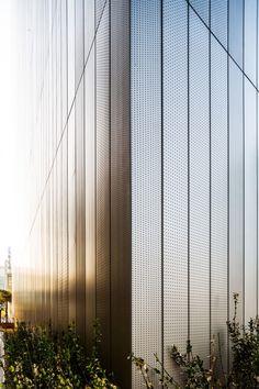 Dragonfly / iArc Architects