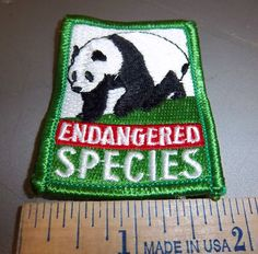 Endangered Species embroidered patch -  very colorful - cool collectible!