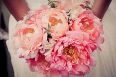 bright Coral Charm peonies accented with silver brunia berries and tiny sprigs of rosemary