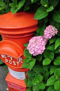 先日の鎌倉の紫陽花はまだ早くて不発! もう一度行って来ました。 レトロな郵便ポストも鎌倉では健在です。 御霊神社 朝7時2...