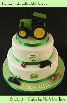 """Green and yellow fondant with blue """"ribbon"""". No dogs lol! a teddy bear and tractor."""