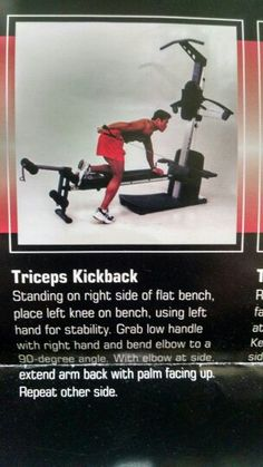 1f195084902 50 Best Weider Crossbow exercises images