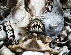 Bone sculptures by Mahalski - Cult Hook details