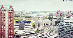 """De Binnenrotte, Markthal, Bibliotheek en de Willemsbrug oftwel #Rotterdam op haar mooist!  Foto: @midi010"""