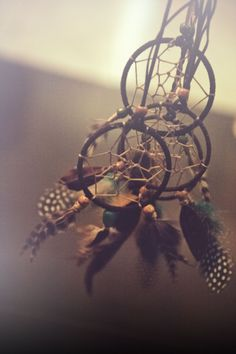 Dreamcatchers@ lavidaromana.com