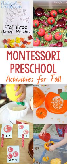 30+ Amazing Montessori Fall Activities for Preschool and Kindergarten, Montessori Fall Practical Life, Montessori Books, Montessori Printables, Montessori Themes #Montessori