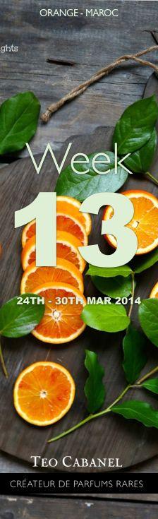 ✮ Ingredient of the Week 13 : Orange - Maroc #teocabanel #ingredient #perfumery #orange #maroc Teo Cabanel
