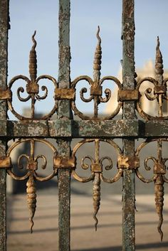 Versailles Gates - Paris, France: What a beautiful photograph. I might have to save this as a potential desktop pic of the week! Love the gate. Gold Gate, Chateau Versailles, Rust In Peace, Saint Michael, I Love Paris, Paris Photography, Iron Work, Iron Gates, Garden Gates