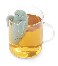 My blog for Flavourites about manatea (in Dutch). #manatee #tea