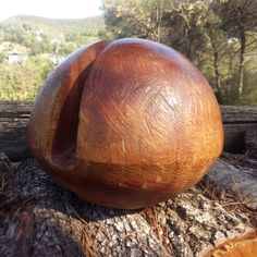 """Santa Cruz or ""Gusanero"" wood. Colombia. 1996."