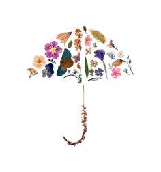 Pressed Flowers - Umbrella
