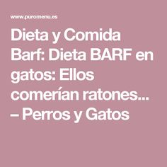 Dieta y Comida Barf: Dieta BARF en gatos: Ellos comerían ratones... –  Perros y Gatos