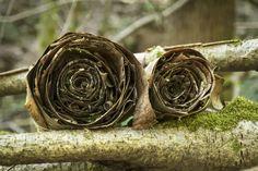 39 Best Holz Und Zweige Images On Pinterest In 2018 Branches