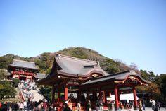 Tsurugaoka shinto shirine, Kamakura.