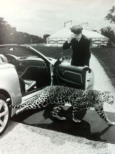 I wish i could see the car better.. i hope its a jaguar because that's a great ad.