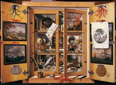 This trompe-l'oeil painting of a cabinet of curiosities by Domenico Remps further blurs the boundary between nature and art, between real and fictitious spaces. (Domenico Remps, Cabinet of Curiosities, Opificio delle Pietre Dure, Florence) Renaissance, Sibylla Merian, Historia Natural, Collections Of Objects, Displaying Collections, Cabinet Of Curiosities, Natural Curiosities, Albrecht Durer, Caravaggio