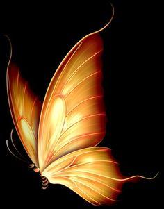 Butterfly Drawing, Butterfly Tattoo Designs, Butterfly Wallpaper, Butterfly Flowers, Beautiful Butterflies, Beautiful Landscape Wallpaper, Beautiful Landscapes, Beautiful Love Pictures, Cover Pics For Facebook