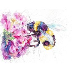 A4 Wild Bumble Bee and Flower Wildlife watercolour art print by nicola jane…