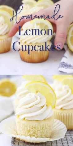 These homemade moist lemon cupcakes are topped with a creamy lemon buttermilk frosting. This moist cupcake recipe is homemade, it's a must try! Pair with fruit topping or filling for the perfect summertime cupcake. Gourmet Cupcakes, Moist Cupcake Recipes, Homemade Cupcake Recipes, Moist Cupcakes, Lemon Cupcakes, Yummy Cupcakes, Baking Recipes, Simple Lemon Cupcake Recipe, Strawberry Frosting Recipes