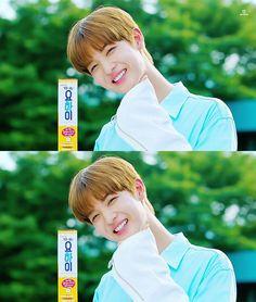 my bae (harem! Jinyoung, Baby Lollipops, Beautiful Love, My Love, Bae, Ong Seongwoo, Lee Daehwi, Kim Jaehwan, Ha Sungwoon