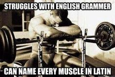 Muscle building programs that cover muscle building foods, diet, the best muscle building supplements, muscle building protein. Learn the secrets of quick muscle building with the best muscle building exercises. Workout Memes, Gym Memes, Gym Workouts, Funny Workout, Daily Workouts, Workout Tips, Fitness Studio Motivation, Fitness Motivation, Powerlifting Motivation