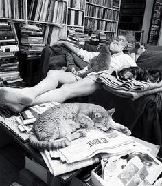 Edward Gorey  Writers and Kitties