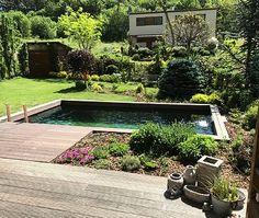Jezírko ve stylu bazénu - Kuřim 35m³ - Zahradní jezírka | small lake Stylus, Garden Design, Patio, Nice, Outdoor Decor, Home Decor, Homemade Home Decor, Yard, Style