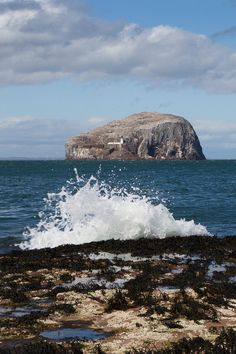 Bass Rock, Firth of Forth - used to house French prisoners of war East Lothian North Berwick, Scotland my home. Great Places, Places To See, Beautiful Places, Scotland Travel, Ayr Scotland, Hulk, Scottish Islands, British Isles, Great Britain