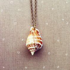 Seashell Necklace- Real Shell Nautical Jewelry Mermaid Real Seashell... (505 UYU) ❤ liked on Polyvore featuring jewelry, necklaces, seashell jewelry, seashell necklace, shell jewelry, beach necklaces and beach jewelry