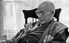 3 Profound Lessons From a Japanese Zen Master That Will Blow Your Mind - Universe Insider