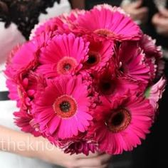 I think a gerber daisy bouquet is perfectly sweet and simple