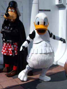 Donald Duck at Disney Character Central yeah they do this for Star Wars weekend they aren't as cuddly when they wear the plastic
