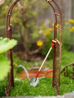 Fairy Garden, making a mossy wonderland for the fairies