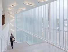 Glazed entrance pavilion to extend the galleries of the Blaffer Art Museum in Houston, Texas, by New York studio WORKac. Architecture Company, New York Architecture, Museum Exhibition Design, Art Museum, Halle, Channel Glass, Glass Curtain Wall, Internal Courtyard, New York Studio