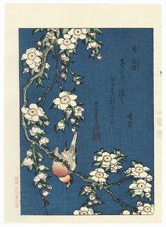 Bullfinch on weeping cherry blossom Japanese woodblock print by Hokusai with poem reproduction print Japanese Prints, Japanese Art, Weeping Cherry Tree, Rice Paper Decoupage, Bullfinch, Katsushika Hokusai, Art Japonais, Postcard Art, Needlepoint Kits