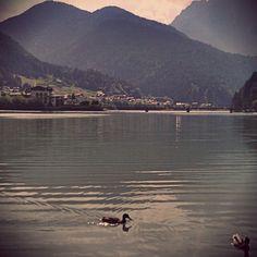 #Auronzo #Dolomiti Photo by andreameneghini
