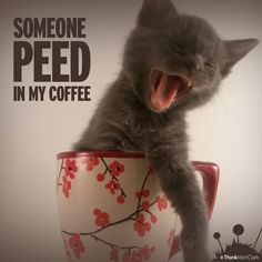 Someone PEED in my coffee!!!