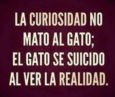 Curiosity didn't kill the cat; the cat committed suicide to see reality.