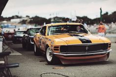 ford-mustang-boss-302-trans-am............yellow