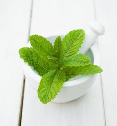 Mint leaves can help your beauty regime #skincare #beauty #skin http://3ng.io/rc/uoGx2L