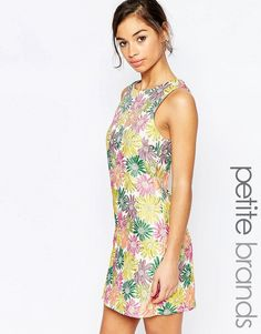 Buy it now. True Decadence Petite Bright Floral Jacquard Shift - Multi. Petite dress by True Decadence Petite, Floral jacquard, Round neckline, Zip back fastening, Shift style, Regular fit - true to size, Hand wash, 100% Polyester, Our model wears a UK 8/EU 36/US 4. ABOUT TRUE DECADENCE PETITE True Decadence is a trend-led label, who take their influences straight from the catwalk. True Decadence Petite brings us the same fashion obsessed collection as their mainline � party dresses, chic…