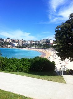 Beautiful day at Coogee Beach