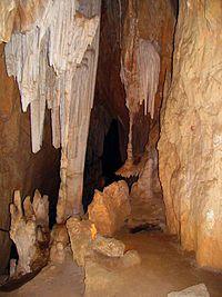 Wombeyan Caves - Wombeyan Karst Conservation Reserve