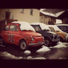 Snow Bird Fiats